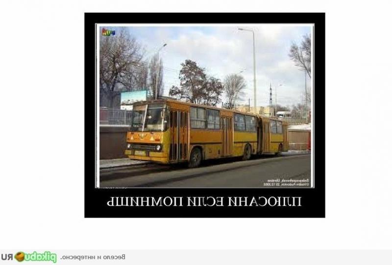 аренда автобуса лиаз